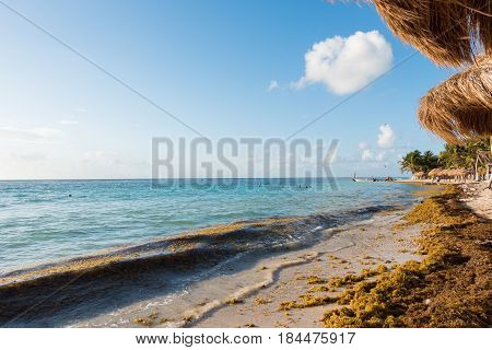 The beach in Mahahual, Quintana Roo, Mexico