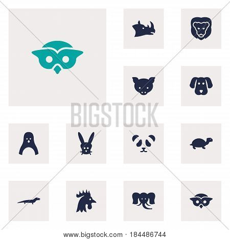 Set Of 12 Beast Icons Set.Collection Of Trunked Animal, Tortoise, Diver And Other Elements.