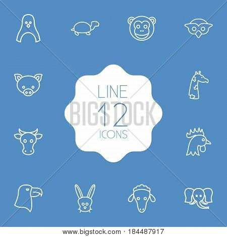 Set Of 12 Alive Outline Icons Set.Collection Of Sheep, Giraffe, Pig And Other Elements.