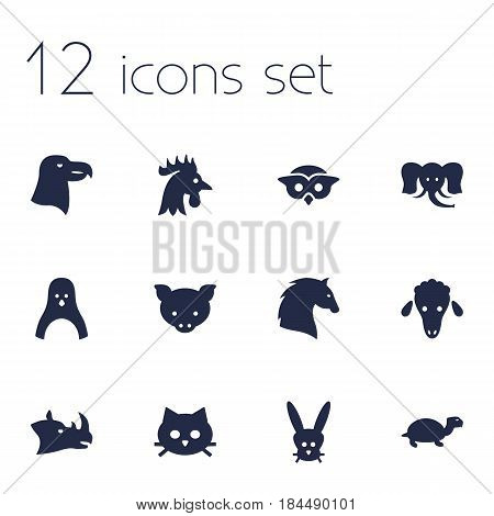 Set Of 12 Brute Icons Set.Collection Of Rhinoceros, Trunked Animal, Hog And Other Elements.