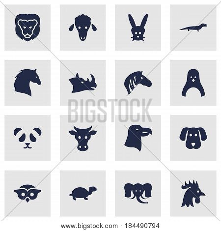 Set Of 16 Brute Icons Set.Collection Of Aquila, Steed, Hound And Other Elements.
