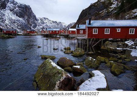 Typical Red Rorbu Fishing Huts On Lofoten Islands In Norway On The Shore Of The Fjord.