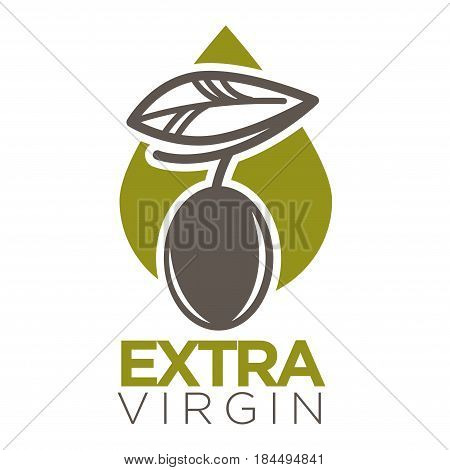Extra virgin logo design vector illustration of company label black olive berry with leaf on green oil drop. Healthy condiment template with colorful sticker flat style logotype on white background