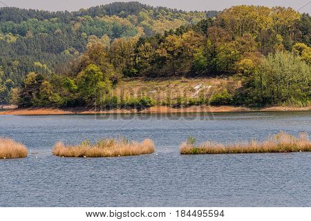 Landscape of lake with three small islands in the middle of lake and shoreline with a small clearing surrounded by evergreen trees.