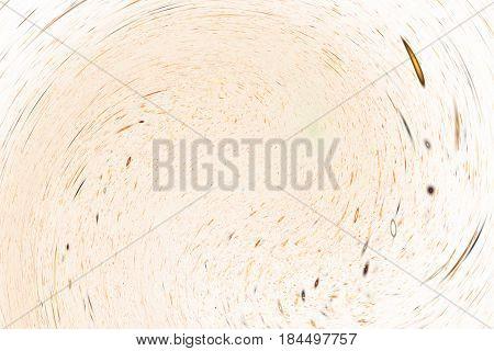 Abstract Golden Sparkles On White Background. Fantasy Fractal Texture. Digital Art. 3D Rendering.