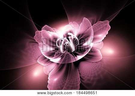 Abstract Exotic Flower With Textured Petals On Black Background. Fantasy Fractal Design In Pastel Pi