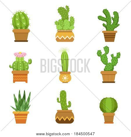 Decorative cactus in pots. Vector set. Desert plants isolate on white background. Green cactus succulent, illustration of tropical cactus collection