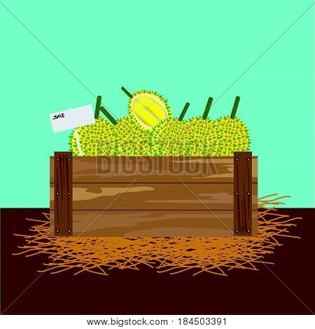 durian in a wooden crate Vector illustration
