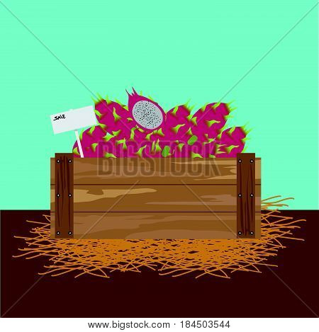 Dragon fruit in a wooden crate Vector illustration