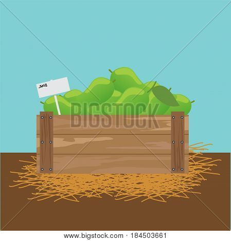 mango in a wooden crate illustration