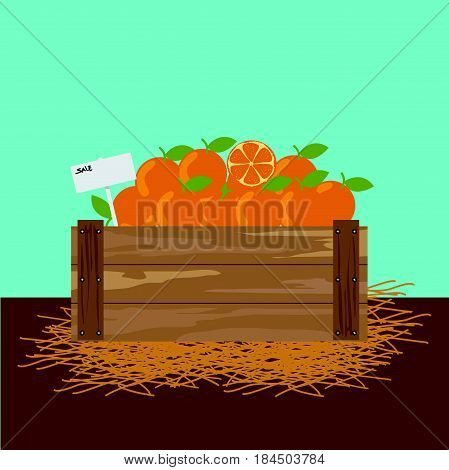 Orange in a wooden crate Vector illustration.