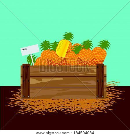pineapple in a wooden crate Vector illustration.