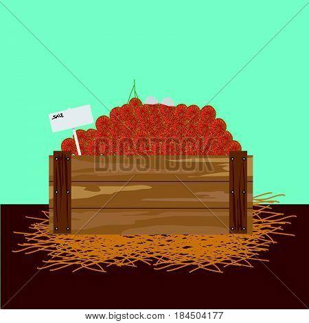 Rambutan in a wooden crate Vector illustration
