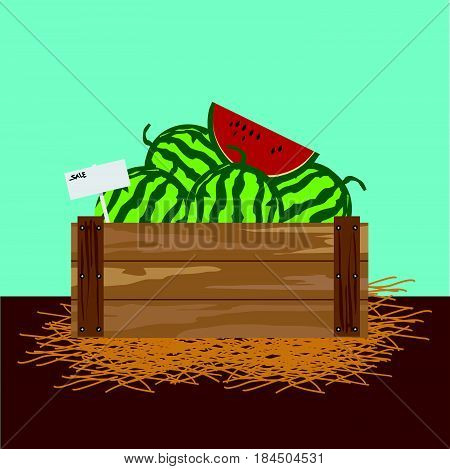 watermelon in a wooden crate Vector illustration.