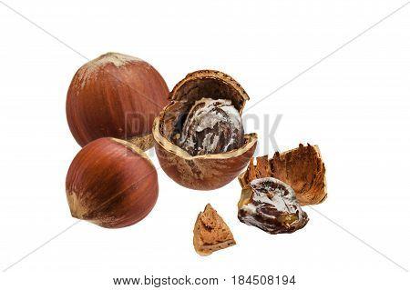 Walnut group many horizontal isolated on white background. A spoiled walnut