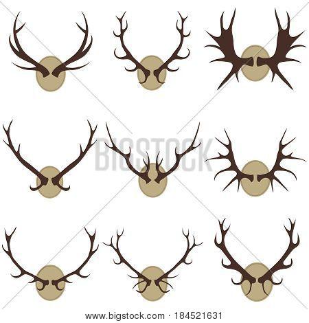 Deer horns. Flat design vector illustration vector.