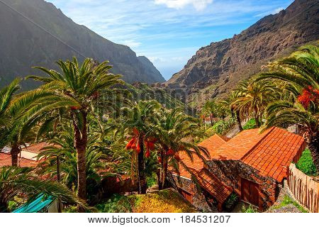 Romantic Masca village. Canary Islands. Tenerife. Spain