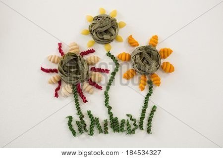 Varieties of pasta forming flower on white background