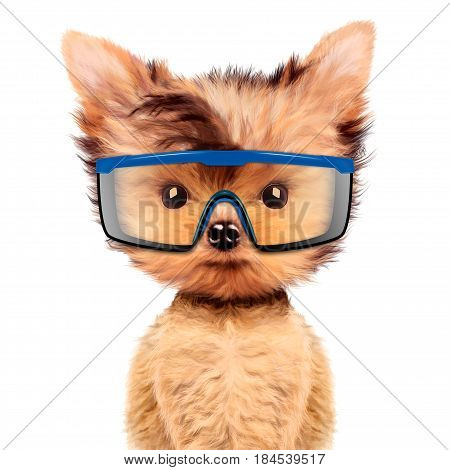 Funny dog in protective glasses Isolated on white background. Fixing computer and repair center concept with cute dog. Concepts for web banners, web sites. 3D illustration with clipping path