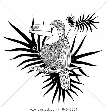 Vector illustration. Graphic arts. Toucan. Tropical toucan bird on a background of tropical leaves. Black and white.
