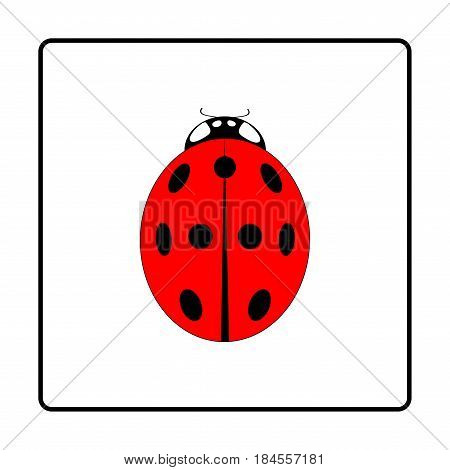 Ladybird isolated. Illustration ladybug in black frame. Cute colorful sign red insect symbol spring summer garden. Template for t shirt apparel card poster. Design element. Vector illustration