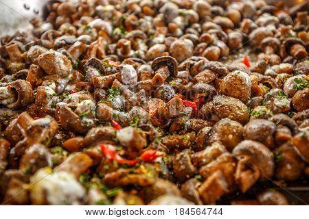Edible Champignon Mushrooms