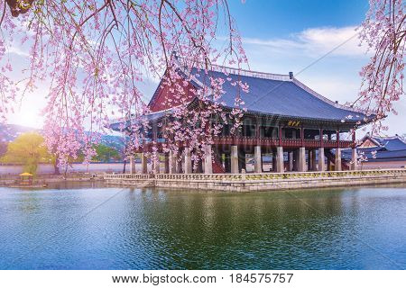 Tourist. And Gyeongbokgung Palace In Spring, South Korea.