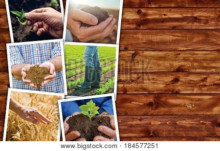 Agriculture themed photo collage with copy space on wooden background