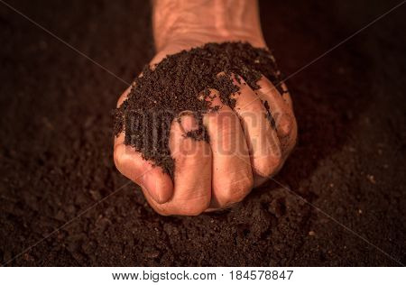 Quality soil in male gardener hands cultivated dirt ground for organic gardening and agriculture