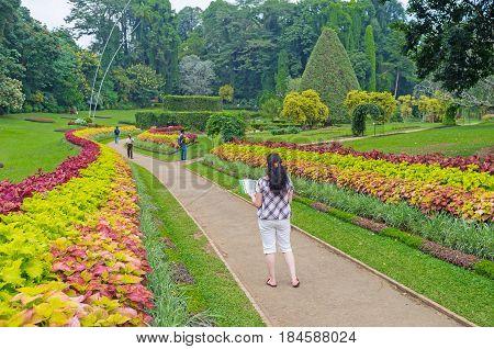 To Discover Botanical Garden