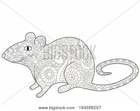 rat animal coloring book for adults vector illustration. Anti-stress coloring for adult rodent. Zentangle style. Black and white lines. Lace pattern