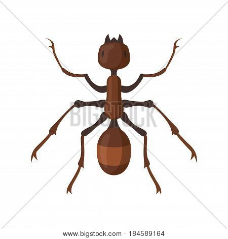 Ant or termite vector illustration. Ant insect Icon flat style. Home pest termite on a white background.