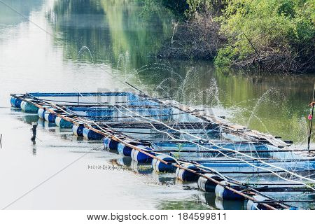 Water injection oxygen In Nile tilapia Fish farms