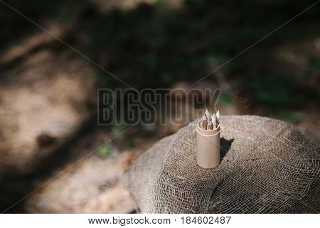 Close up colorful pencils standing in wooden case on tree stump outdoors
