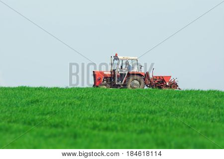 Tractor in a green wheat field on the blue sky