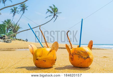 To Drink Coconut Water
