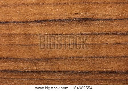 Teak wood (Tectona grandis)  wood texture. Raw unfinished surface. Prized wood for durability and water resistance due to it's natural oils.