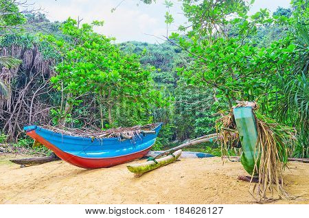 The Boats In Jungle