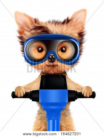 Funny dog with jackhammer and wearing protective glasses isolated on white. Fixing computer and repair center concept with cute dog. 3D illustration with clipping path