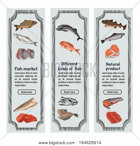 Sketch colored seafood vertical banners with text and different whole fishes parts and pieces vector illustration