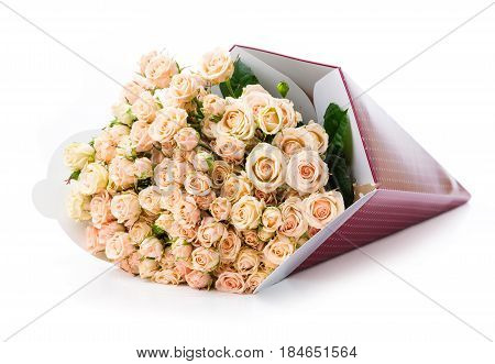 Bunch of cream roses in paper packaging over white background