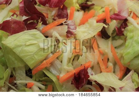 Fresh green mixed salad with sliced carots