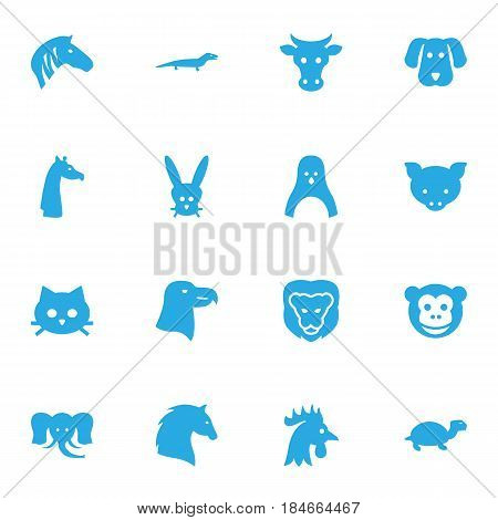 Set Of 16 Alive Icons Set.Collection Of Hog, Steed, Ape And Other Elements.