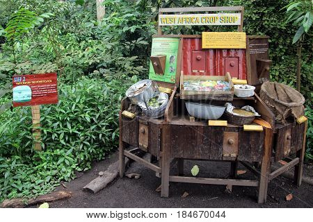 Bodelva, Cornwall, Uk - April 4 2017: The West Africa Crop Shop Display At The Eden Project Environm