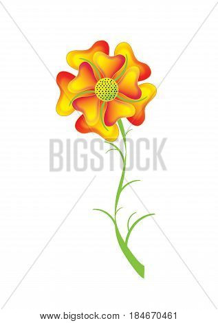 Single flower yellow-orange pansy object white isolated