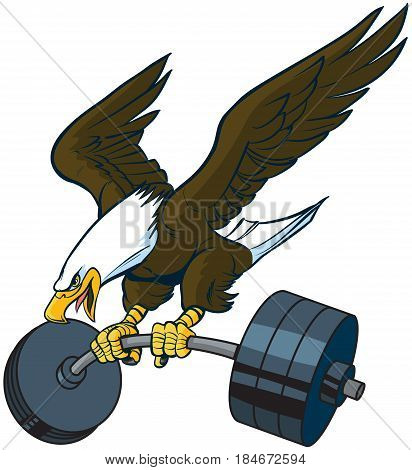 Vector cartoon clip art illustration of a bald eagle mascot diving or swooping down with spread wings and a barbell weight in its talons.