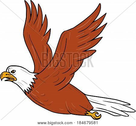 Illustration of an angry eagle flying wings flapping viewed from the side set on isolated white background done in cartoon style.
