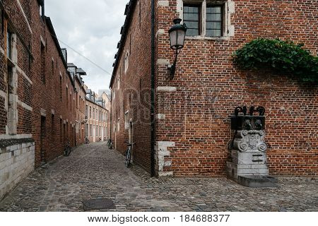 Leuven Belgium - July 30 2016: The Grand Beguinage of Leuven is a well preserved and completely restored historical quarter is owned by the University of Leuven and used as a campus.