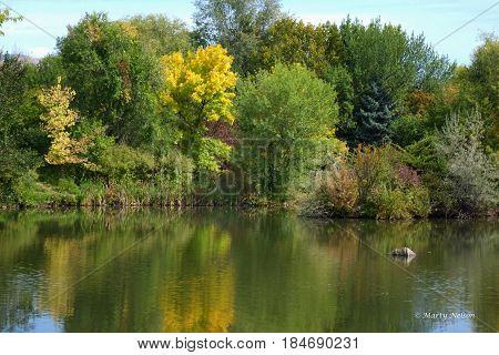 Reflections of Autumn at a city park in Boise, Idaho.
