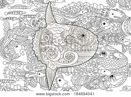 High detailed moon fish for anti stress coloring page, illustration in tracery style. Sketch of a fish in hand drawn background in zentangle style. Vector.